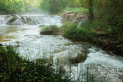 Photograph - Mistical Creek by Iris Greenwell