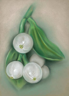 Pastel - Mistletoe Berries by MM Anderson