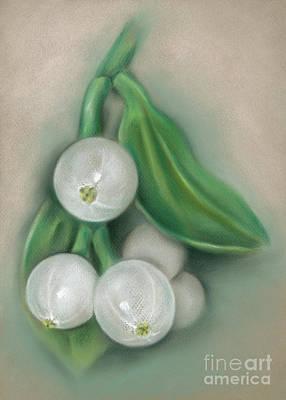 Pastel - Mistletoe Berries by MM Anderson