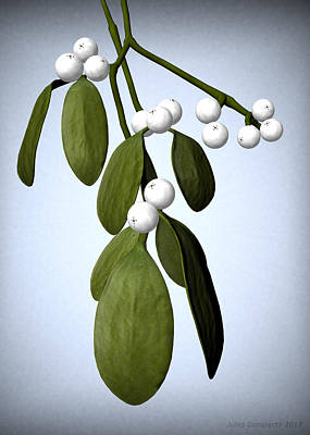 Digital Digital Art - Mistletoe by Jules Gompertz