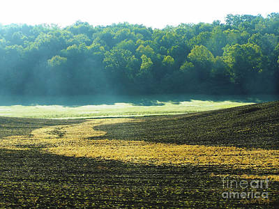 Painting - Mistly Morning Corn-field  by Expressionistart studio Priscilla Batzell