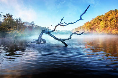 Photograph - Mists Of The Morning by Debra and Dave Vanderlaan