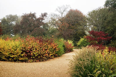Photograph - Misty Autumn Colours  by Shirley Mitchell