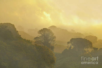 Photograph - Misty Autumn Morning by Terri Waters