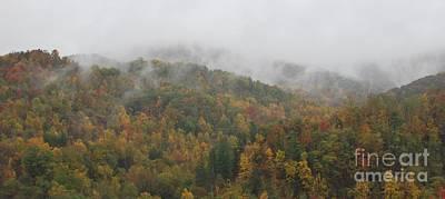 Misty Autumn Art Print