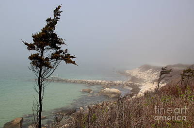Photograph - Misty Beach by Lennie Malvone