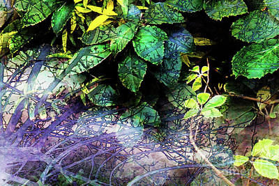 Misty Branches Art Print