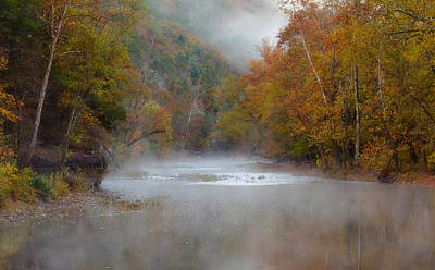 Photograph - Misty Buffalo Morning by Jonas Wingfield