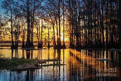 Caddo Lake Photograph - Misty Caddo Dawn by Inge Johnsson