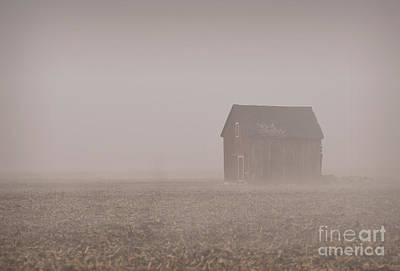 Photograph - Misty by Charles Owens