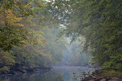 Misty Creek Art Print by Dale Wilson