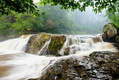 Photograph - Misty Creek by Michael Scott