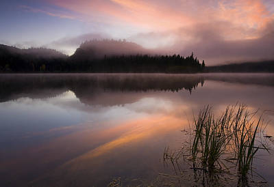 Misty Dawn Art Print by Mike  Dawson