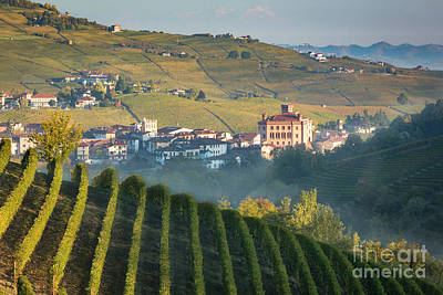 Grapevines Photograph - Misty Dawn Over Barolo by Brian Jannsen