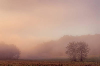 Photograph - Misty Dawn by Robert Charity
