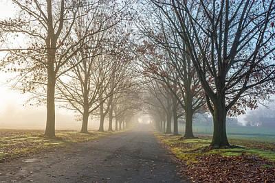 Photograph - Misty Farm Road by Andrew Kazmierski