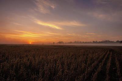 Photograph - Misty Field  by John Harding