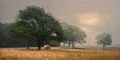 Photograph - Misty Fields by Robin-Lee Vieira