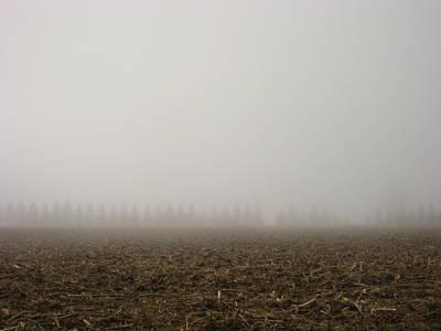 Misty Fields Art Print