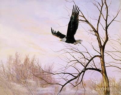 Soaring Painting - Misty Flight-bald Eagle by Paul Henderson
