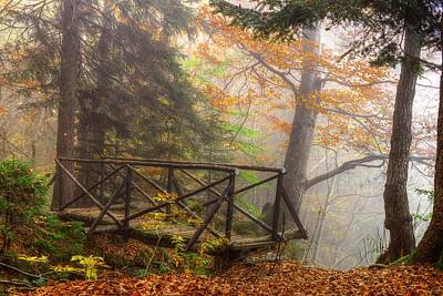 Photograph - Misty Forest by Ivan Slosar