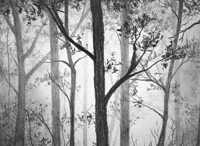 Drawing - Misty Forest by Nolan Clark