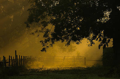 Photograph - Misty Gate by Pam Kaster