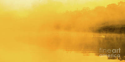 Art Print featuring the photograph Misty Gold by Tatsuya Atarashi