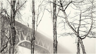 Photograph - Misty Granville Bridge With Tree Trunks by Peter V Quenter