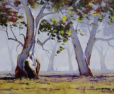 Paintings - Misty Gums by Graham Gercken