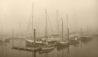 Misty Harbour Art Print