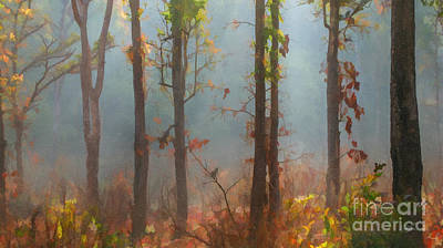 Digital Art - Misty Indian Morning by Liz Leyden