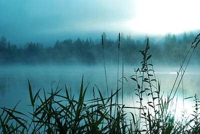 Photograph - Misty Lake In Aqua by Jim And Emily Bush