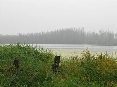 Photograph - Misty Lake by Marilyn Smith