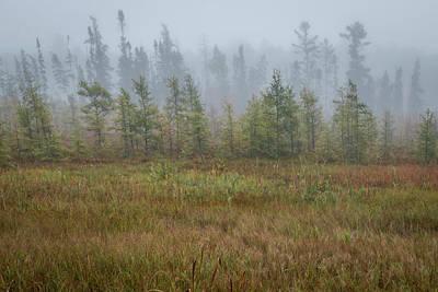 Photograph - Misty Landscape by Patti Deters