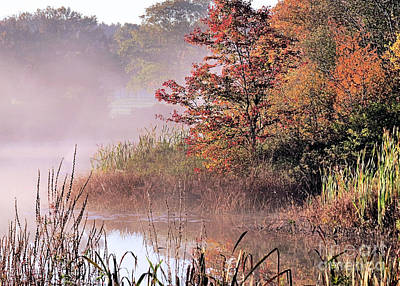Photograph - Misty Marshland by Janice Drew