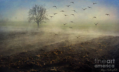 Photograph - Misty Meadows by Kira Bodensted