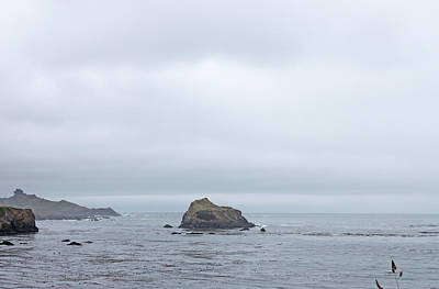 Photograph - Misty Mendocino Morning by Susan Vineyard