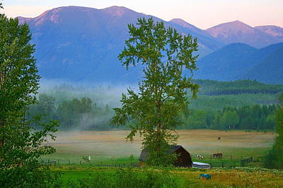 Photograph - Misty Montana Evening by Patricia Haynes