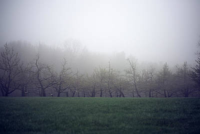 Photograph - Misty Mood by Brian Hale