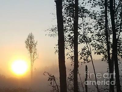 Photograph - Misty Morning 2 by Maria Urso