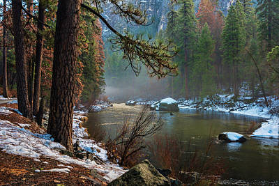 Photograph - Misty Morning At Merced River by Roberta Kayne