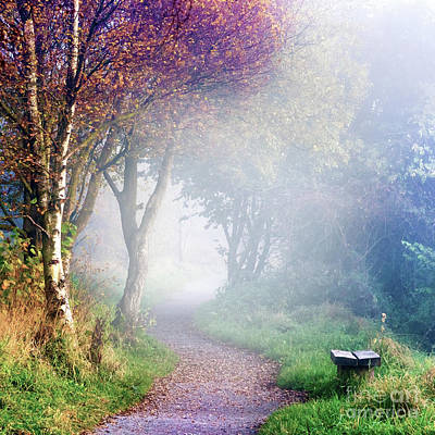 Misty Morning At Sutton Bank Art Print by Janet Burdon
