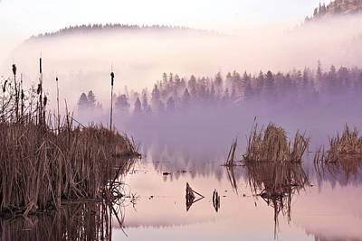 Photograph - Misty Morning At Vaseux Lake by John Poon