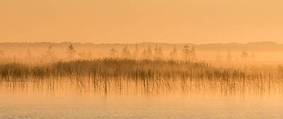 Misty Morning Floating Bog Island On Boy Lake Art Print