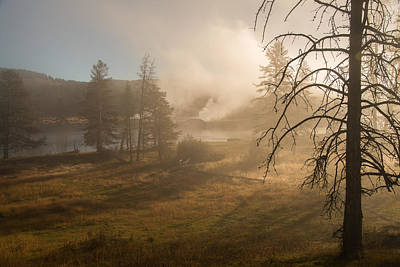 Photograph - Misty Morning by Gary Lengyel
