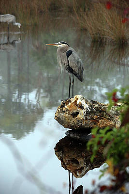 Photograph - Misty Morning Heron by Lamarre Labadie