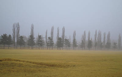 Photograph - Misty Morning by Hyuntae Kim