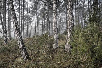 Misty Morning In Baronia De Rialb Catalonia Art Print