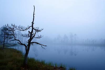 Blending Photograph - Misty Morning In Marsh by Romeo Koitmae
